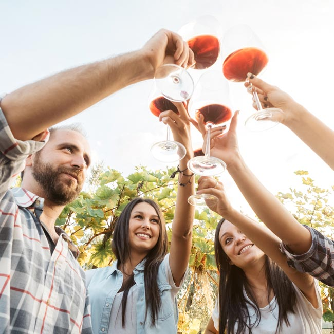 Group of Friends Wine Tasting – Luxury Travel Services by Travelive