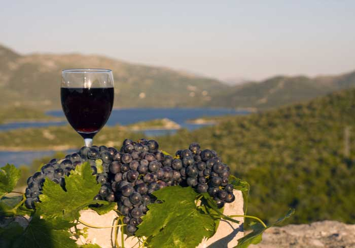 Wine Tasting Peljesac - Romantic Honeymoon in Croatia, Travelive