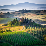 Landscape in Tuscany – Tuscany Experience, Vacation Packages in Italy Travel